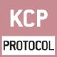 KERN Communication Protocol  ( KCP ) :  Ist   ein standardisierter Schnittstellen- Befehlssatz für KERN-Waagen und andere Instrumente,  der das Abrufen und Steuern aller relevanten  Parameter und Gerätefunktionen erlaubt.  KERN Geräte mit KCP kann man so ganz ein- fach in Computer, Industriesteuerungen und  andere digitale Systeme integrieren.